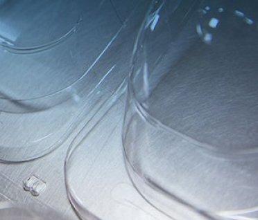 Nhựa định hình và những ứng dụng của nhựa định hình trong cuộc sống